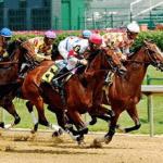 Le corse dei cavalli è anche molto ben trattati dal sito