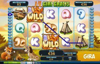 Giri gratuiti in Fortunes of the Fox
